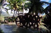 Individuelle Inselrundfahrt Maui mit allen Gästen im Taxi