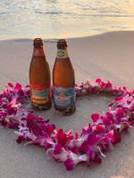 Waikiki-Beach Sunset