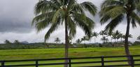 Kauai - Inselrundfahrt