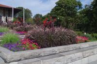 Spaziergang im Mount Royal Park mit Besuch des