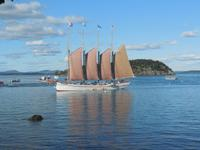Segelschiff vor Bar Harbor