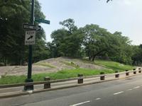 Rikscha-Fahrt durch den Central Park