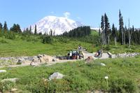 Blick auf Mount Rainier vom Besucherzentrum