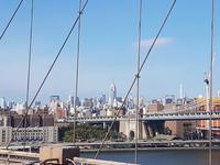 Skyline Manhattans