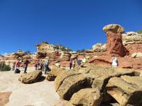 im Cohab Canyon