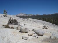 Gletscherkugeln auf dem Lembert Dome