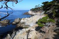 Monterey, 17-Miles-Drive