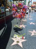 Blumen anlässlich Jim Morrisons Todestags