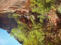 100_Zion Nationalpark