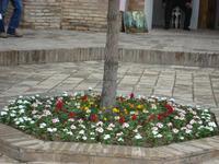 Taschkent: Rundfahrt/Rundgang
