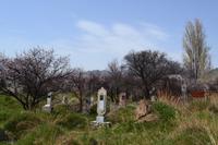 Kirgisistan - Friedhof am Issyk-Kul-See