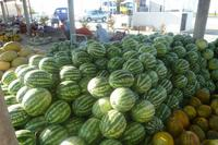 Melonenmarkt Usbekistan