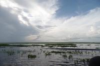 Los Llanos - Rundreise Venezuela – Natur und Abenteuer pur