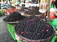 Maulbeeren in Da Lat