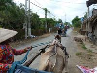 Kutschfahrt im Mekongdelta