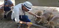 Besuch im Featherdale Wildlife Park