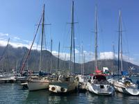 Am Westkap unterwegs: Blick auf Hout Bay