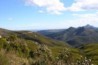 Auf dem Robinson Pass- 860  m