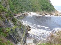 232_Im Tsitsikamma-Nationalpark
