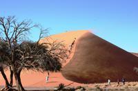 Düne 45 - Sandsturm