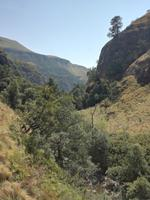 Drakensberge - Rainbow Gorge Trail
