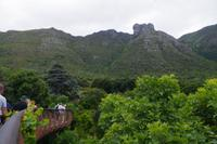 Südafrika - Kapstadt - Botanischer Garten Kirstenbosch