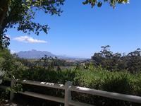 Devon Valley - Stellenbosch