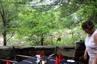 Stone Camp - Frühstück mit Aussicht
