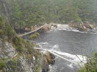 Tsitsikamma-Nationalpark (Wanderung zur Hängebrücke)