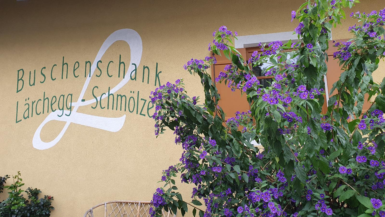 https://www.eberhardt-travel.de/reisebilder/reisetipp/kroenender-abschluss-eines-erlebnisreichen-tages-in-der-steiermark-der-besuch-in-einem-buschenschank-/original/1917484