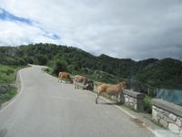 Covadonga (23)