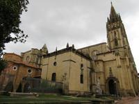 Oviedo (17)
