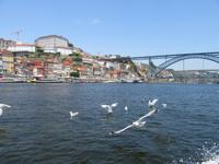 Porto (73)