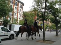 berittene Polizei