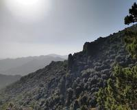 181 Die Basaltmauer am Madari